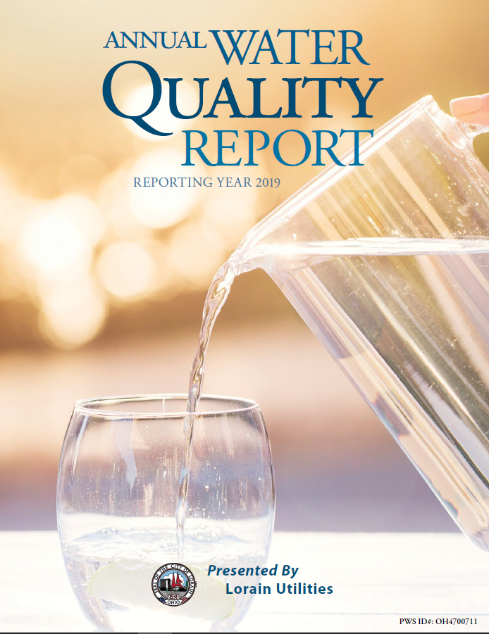 Annual Water Quality Report 2019