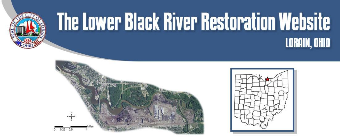 Lower Back River Restoration